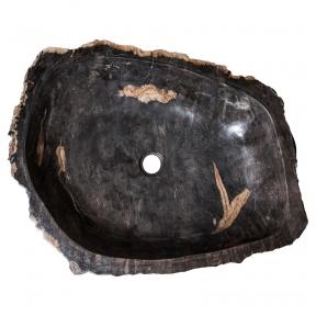 Fosilijos praustuvas , suakmenėjęs medis L70 W57 H15cm