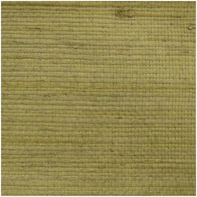 Natūralaus pluošto tapetai DC06-1013