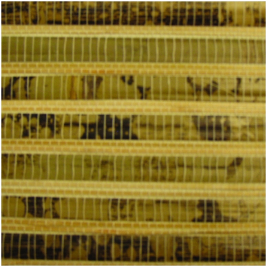 Natūralaus pluošto tapetai DT021-501