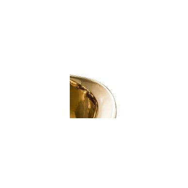 Žalvarinė vonia Thalia 172 × 70 × 72 cm 4